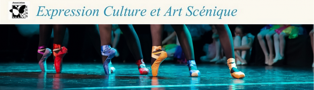 Expression Culture et Art Scénique